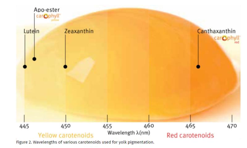DSM CAROPHYLL Yellow 10% Factors Affecting Egg Yolk Pigmenting Efficiency - 2