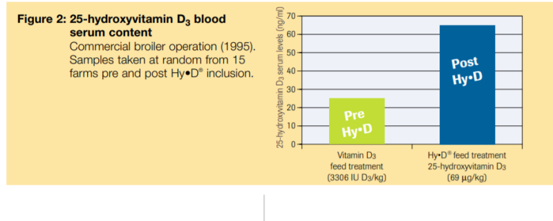 DSM Hy-D Vitamin D3 Metabolism - 3