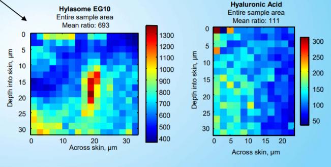 Vantage Personal Care Hylasome EG-10 Efficacy Studies - 6