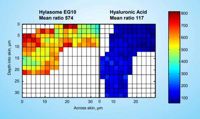 Vantage Personal Care Hylasome EG-10 Efficacy Studies - 7