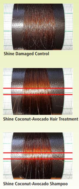 Vantage Personal Care Vantage Coconut-Avocado Hair Milk Efficacy Study - 1