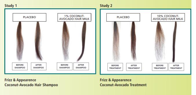 Vantage Personal Care Vantage Coconut-Avocado Hair Milk Efficacy Study - 2