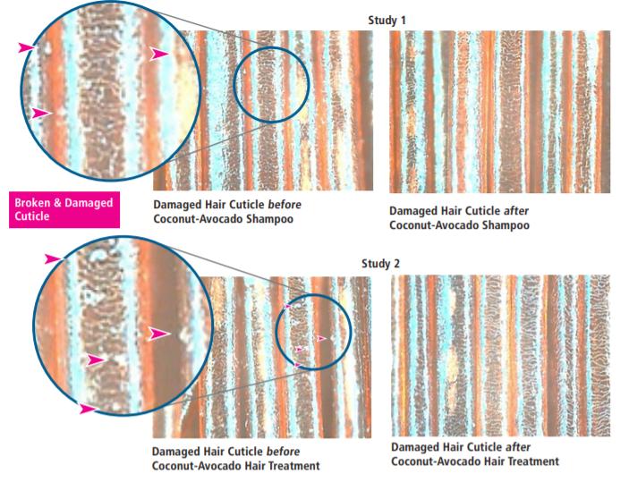 Vantage Personal Care Vantage Coconut-Avocado Hair Milk Efficacy Study - 3