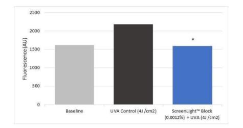 Lonza ScreenLight Block Efficacy test-Extracellular Matrix Structure and Organization - 4