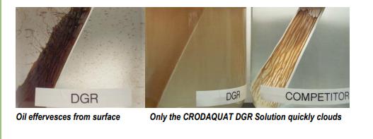 Croda Crodaquat DGR Performance Highlights - 2