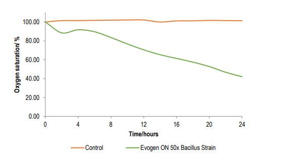 Croda Evogen ON 50x How Evogen probiotics work - 2