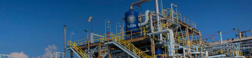 Lion Elastomers producer card banner