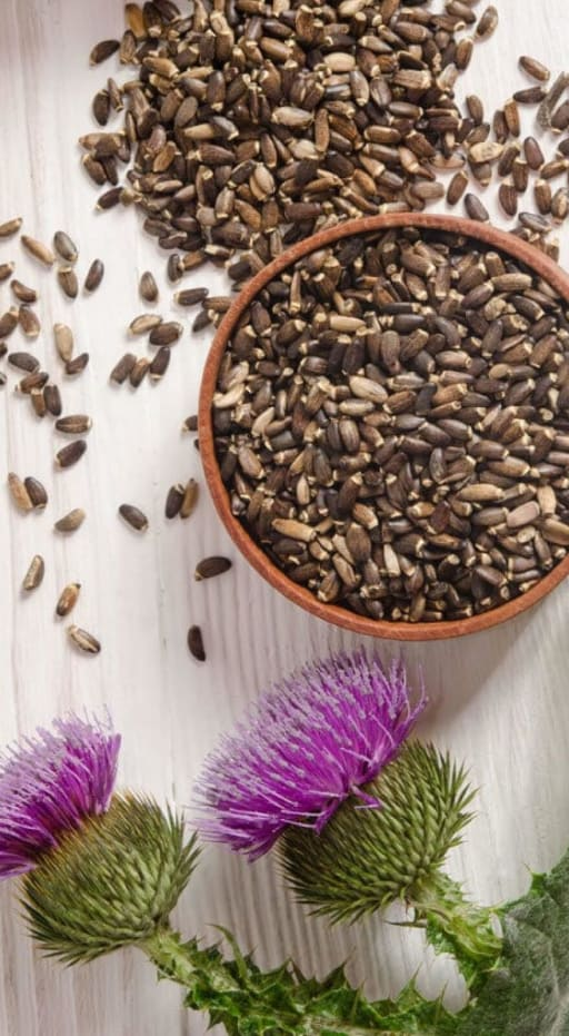 Naturalin Bio-resources Milk Thistle Extract product card banner