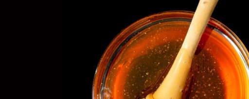 Primetime Nat Honey Flavor Wonf (Bd-10794) product card banner