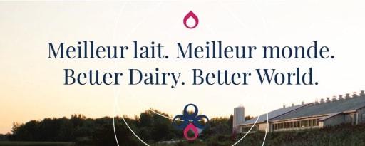 Crino® Skim Milk Powder product card banner