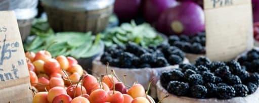 Fermapro® Vegetables product card banner
