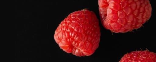 Primetime Nat Raspberry Flavor Wonf (Bd-10357) product card banner