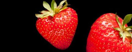 Primetime Nat Strawberry & Cream Flavor Wonf (Bd-10897) product card banner