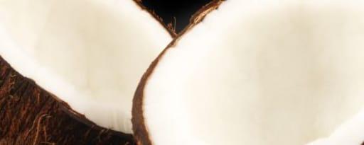 Primetime Nat Coconut Flavor Wonf, Coconut Milk Type (Bd-10766) product card banner