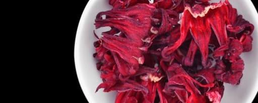 Primetime Nat Hibiscus Flavor Wonf (Bd-10628) product card banner