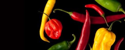 Primetime Nat Jalapeno Pepper Flavor Wonf (Bd-10797) product card banner