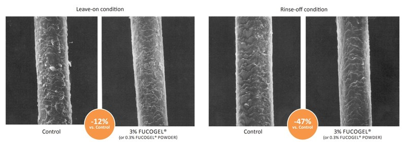 Solabia Group Fucogel 1.5P Efficacy Studies - 9